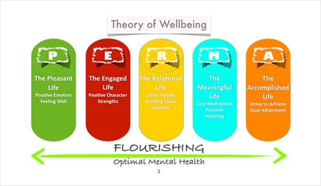Theory of Wellbeing